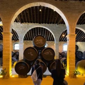 Bodega Tour Andalusien Jerez
